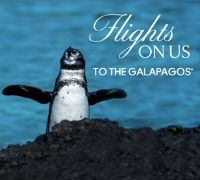 Flight's on Celebrity Cruises to the galapagos